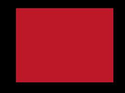 nsg_logo_mob